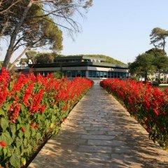 Отель Tropikal Resort Дуррес приотельная территория фото 2