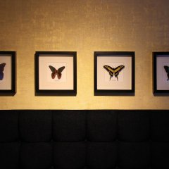 Отель House of Freddy Нидерланды, Амстердам - отзывы, цены и фото номеров - забронировать отель House of Freddy онлайн питание