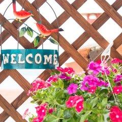 Отель Holiday Home Parthenonos 37 Ситония