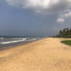 Отель Palm Beach Villa Шри-Ланка, Ваддува - отзывы, цены и фото номеров - забронировать отель Palm Beach Villa онлайн пляж