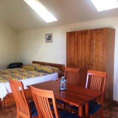 Отель Pension Platan 3* Студия с различными типами кроватей фото 2