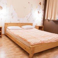 Гостиница Olympic Hostel в Сочи отзывы, цены и фото номеров - забронировать гостиницу Olympic Hostel онлайн комната для гостей фото 4