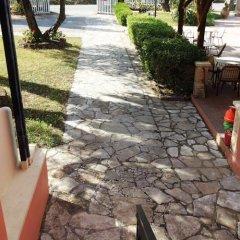 Отель Phivos Studios Греция, Палеокастрица - отзывы, цены и фото номеров - забронировать отель Phivos Studios онлайн фото 11