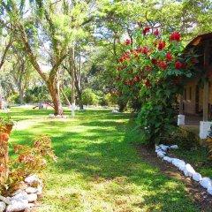 Отель El Bosque Hotel Гондурас, Копан-Руинас - отзывы, цены и фото номеров - забронировать отель El Bosque Hotel онлайн фото 7