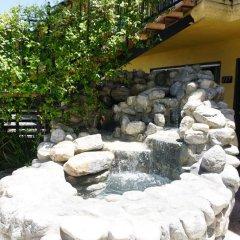 Отель Casa Bella Inn США, Лос-Анджелес - отзывы, цены и фото номеров - забронировать отель Casa Bella Inn онлайн бассейн