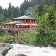 Отель Ayder Avusor Butik Otel фото 2