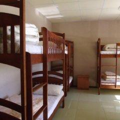 Citrus Hostel Кровать в общем номере с двухъярусной кроватью фото 8