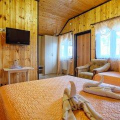 Гостевой дом Мадлен 2* Стандартный номер с различными типами кроватей фото 3