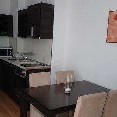Апартаменты Tes Rila Park & Semiramida Apartments Студия фото 6