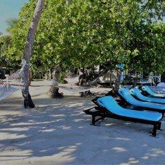 Отель Robinson Crusoe Island Фиджи, Вити-Леву - отзывы, цены и фото номеров - забронировать отель Robinson Crusoe Island онлайн бассейн