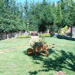 Отель Villa M Cako Албания, Ксамил - отзывы, цены и фото номеров - забронировать отель Villa M Cako онлайн фото 6