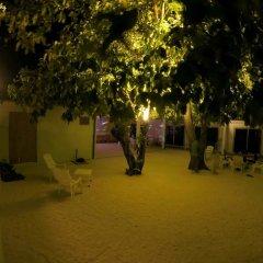 Отель Гостевой Дом Crystal Dhiffushi Мальдивы, Диффуши - отзывы, цены и фото номеров - забронировать отель Гостевой Дом Crystal Dhiffushi онлайн фото 4