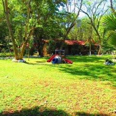 Отель El Bosque Hotel Гондурас, Копан-Руинас - отзывы, цены и фото номеров - забронировать отель El Bosque Hotel онлайн детские мероприятия
