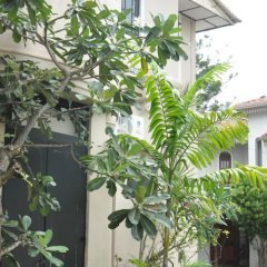 Отель Cheriton Residencies Шри-Ланка, Коломбо - отзывы, цены и фото номеров - забронировать отель Cheriton Residencies онлайн фото 11