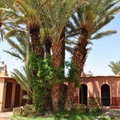 Отель Ecolodge - La Palmeraie Марокко, Уарзазат - отзывы, цены и фото номеров - забронировать отель Ecolodge - La Palmeraie онлайн интерьер отеля