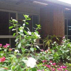 Отель Gecko Lodge Fiji Савусаву интерьер отеля