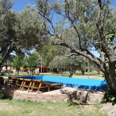 Treehouse Hostel Сан-Рафаэль бассейн