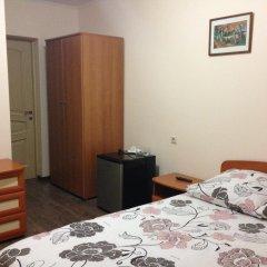 Гостевой Дом Светлана Стандартный номер с двуспальной кроватью фото 5