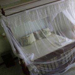 Отель Mahi Villa Шри-Ланка, Бентота - отзывы, цены и фото номеров - забронировать отель Mahi Villa онлайн комната для гостей фото 4
