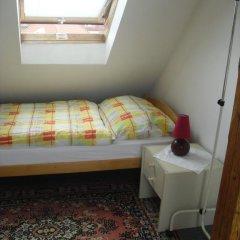 Отель Pension Hanspaulka 2* Стандартный номер с различными типами кроватей фото 9