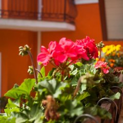 Гостиница Каприз фото 2