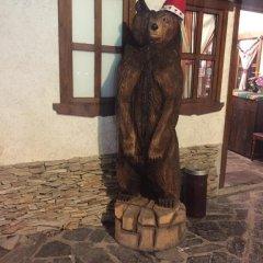 Hotel Bistrica с домашними животными