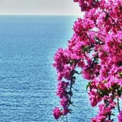 Отель Maison Mediterranea Италия, Пимонт - отзывы, цены и фото номеров - забронировать отель Maison Mediterranea онлайн пляж