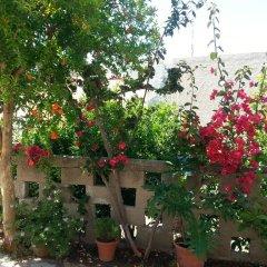 Отель Pizania Греция, Калимнос - отзывы, цены и фото номеров - забронировать отель Pizania онлайн фото 2