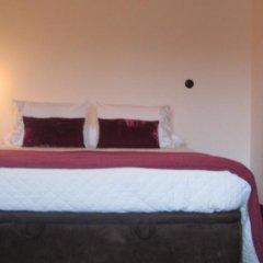 Отель Quinta De Tourais Португалия, Ламего - отзывы, цены и фото номеров - забронировать отель Quinta De Tourais онлайн комната для гостей фото 2