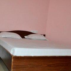Hotel Greenland Palace Bodhgaya комната для гостей фото 4