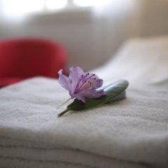 Отель Nidaros Pilegrimsgård Норвегия, Тронхейм - отзывы, цены и фото номеров - забронировать отель Nidaros Pilegrimsgård онлайн ванная