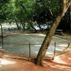 Отель Malwathu Oya Caravan Park спортивное сооружение