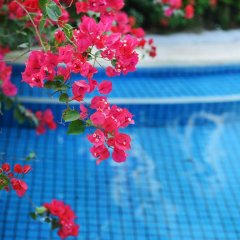 Отель Palm Beach Resort&Spa Sanya 3* Люкс с различными типами кроватей фото 4