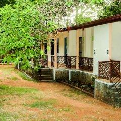 Отель Malwathu Oya Caravan Park фото 11