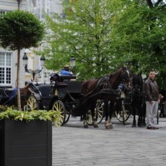 Отель Holidayhome Bruges @ Home фото 11
