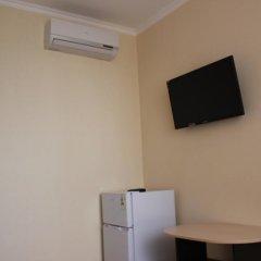 Приветливый Гостевой Дом удобства в номере фото 2