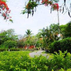 Отель Gusto Tropical Dependance Доминикана, Бока Чика - отзывы, цены и фото номеров - забронировать отель Gusto Tropical Dependance онлайн фото 4