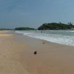 Отель Villa La Luna Шри-Ланка, Берувела - отзывы, цены и фото номеров - забронировать отель Villa La Luna онлайн пляж