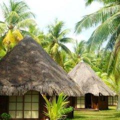 Отель Blue Heaven Island Французская Полинезия, Бора-Бора - отзывы, цены и фото номеров - забронировать отель Blue Heaven Island онлайн пляж