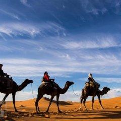 Отель Dar Mari Марокко, Мерзуга - отзывы, цены и фото номеров - забронировать отель Dar Mari онлайн спортивное сооружение