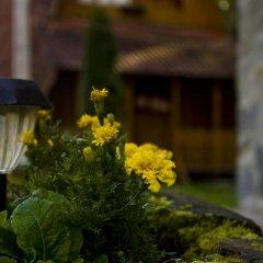 Гостиница Вилла Три Брата Украина, Розгирче - отзывы, цены и фото номеров - забронировать гостиницу Вилла Три Брата онлайн фото 3