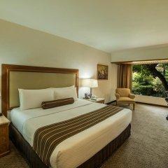 Отель Wyndham Garden Guadalajara Expo 3* Стандартный номер с различными типами кроватей фото 5