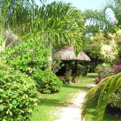Отель Village Temanuata Французская Полинезия, Бора-Бора - отзывы, цены и фото номеров - забронировать отель Village Temanuata онлайн фото 26