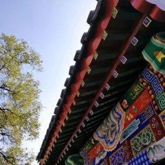 Отель Beichangjie quadrangle dwellings Китай, Пекин - отзывы, цены и фото номеров - забронировать отель Beichangjie quadrangle dwellings онлайн развлечения