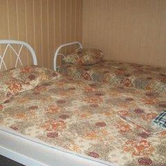 Гостиница Recreation Center Viktoriya Стандартный номер с двуспальной кроватью