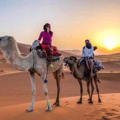 Отель Desert Berber Fire-Camp Марокко, Мерзуга - отзывы, цены и фото номеров - забронировать отель Desert Berber Fire-Camp онлайн спортивное сооружение