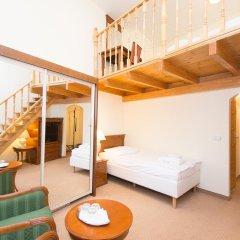 Spa Hotel Anglicky Dvur 3* Стандартный номер с различными типами кроватей