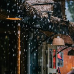 Отель Mingtang Garden Cottage 名堂花园度假屋 Непал, Покхара - отзывы, цены и фото номеров - забронировать отель Mingtang Garden Cottage 名堂花园度假屋 онлайн фото 2