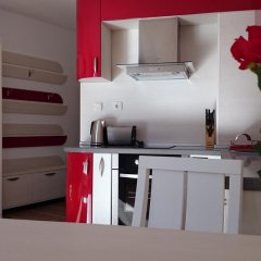 Апартаменты Tes Rila Park & Semiramida Apartments Студия фото 10