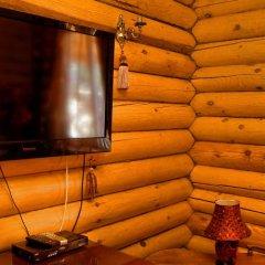 Гостиница Razdolie Hotel в Брянске отзывы, цены и фото номеров - забронировать гостиницу Razdolie Hotel онлайн Брянск удобства в номере фото 2